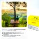 Conversation Cards - Let's talk - German version RICHTIG ODER FALSCH?